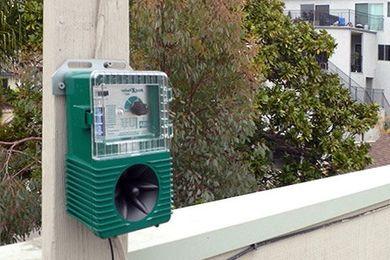 Odstraszacze dźwiękowe ptaków