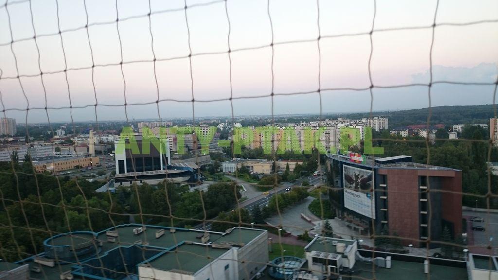 montaż_siatek_przeciwko_ptakom_Katowice_07_1_1